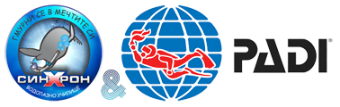 diving_school_logo_120